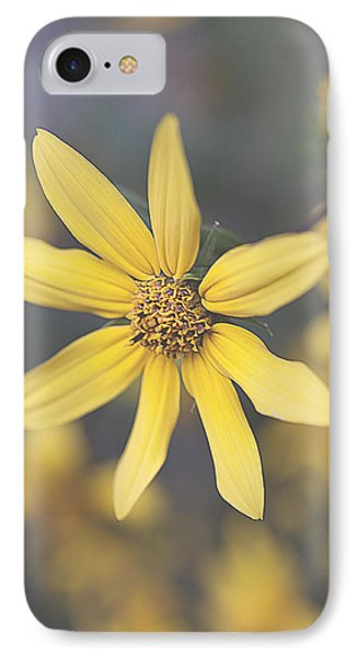 Hello Yellow IPhone Case by Faith Simbeck
