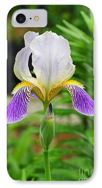 IPhone Case featuring the photograph Her Majesty Iris  by Steve Augustin