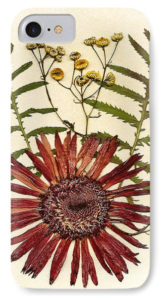 Herbal Tansy Garden IPhone Case