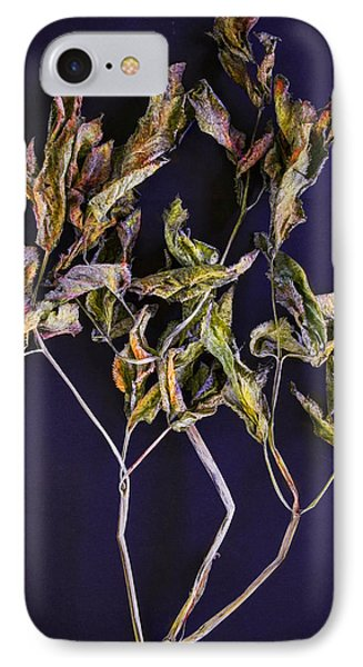 IPhone Case featuring the photograph Herbarium 1 by Vladimir Kholostykh