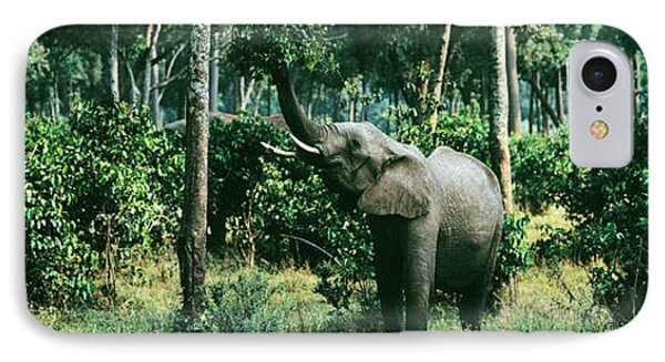 Herd Of Elephants Maasai Mara National IPhone Case by Panoramic Images