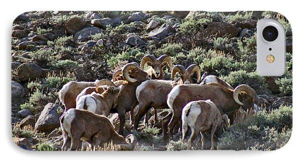 Herd Of Horns IPhone Case
