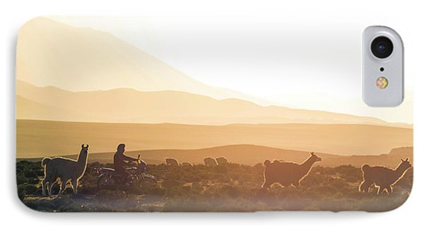 Herd Of Llamas Lama Glama In A Desert IPhone Case
