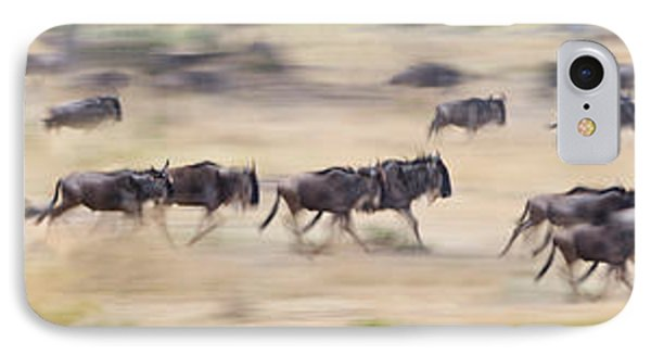 Herd Of Wildebeests Running In A Field IPhone Case by Panoramic Images