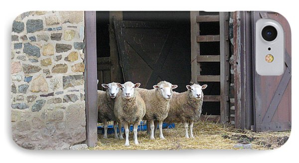 Here's Looking At Ewe IPhone Case
