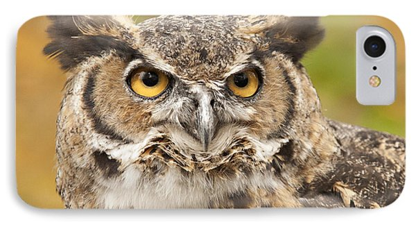 Here's Looking At You IPhone Case by Carol Lynn Coronios