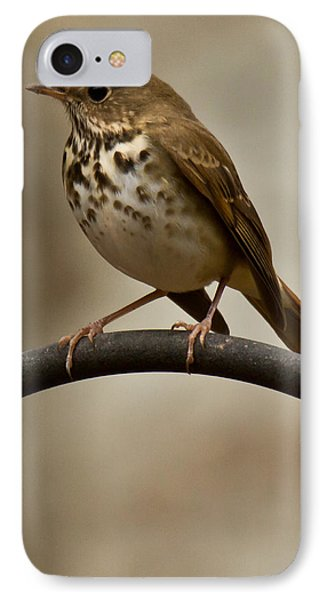 IPhone Case featuring the photograph Hermit Thrush by Robert L Jackson