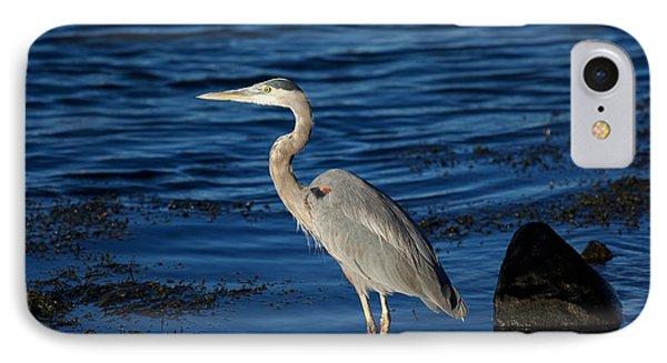 Heron 8 IPhone Case by Allan Morrison