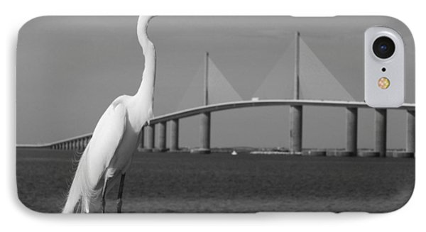 IPhone Case featuring the photograph Heron And Skyway by Daniel Woodrum