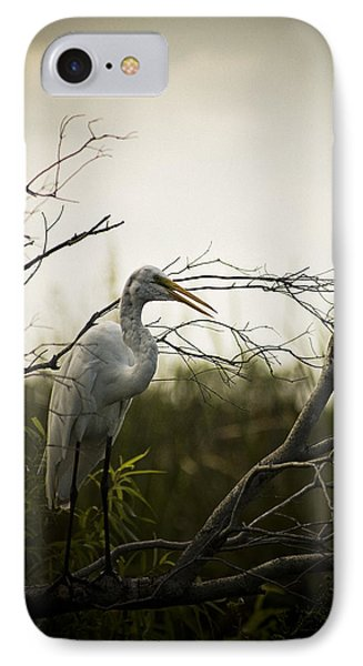 Heron At Dusk IPhone Case by Bradley R Youngberg