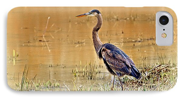 Heron At Sunset Phone Case by Marty Koch