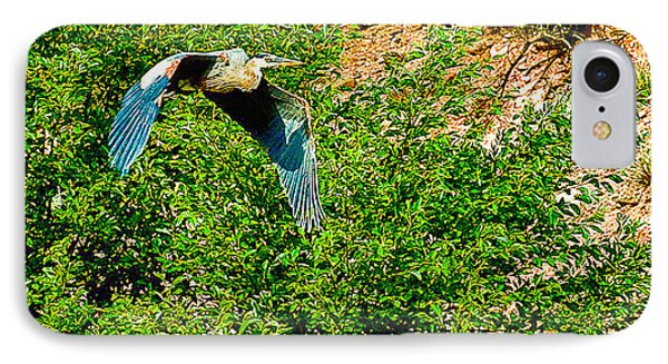 Heron Flies Over Oak Creek In Red Rock State Park Sedona Arizona Phone Case by Bob and Nadine Johnston