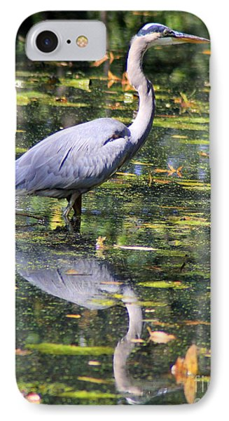 IPhone Case featuring the photograph Heron Hunter by Kenny Glotfelty