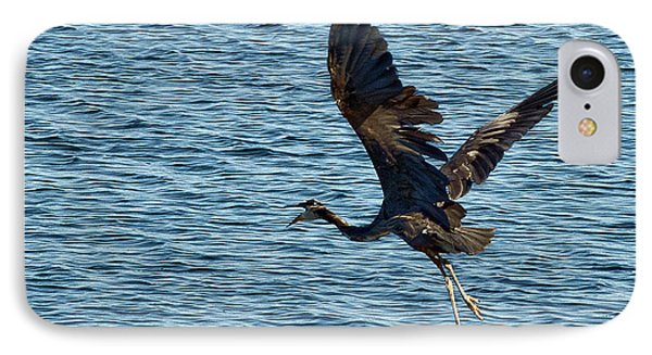 Heron In Flight IPhone Case by Ron Roberts