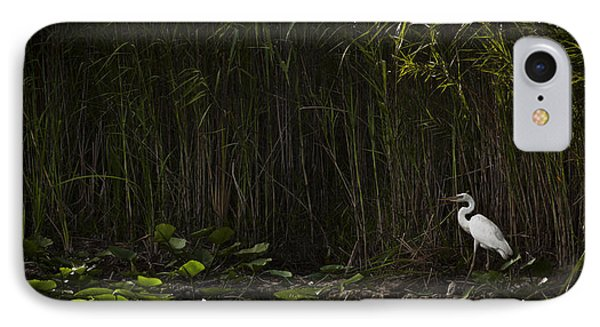 Heron In Grass IPhone Case by Bradley R Youngberg