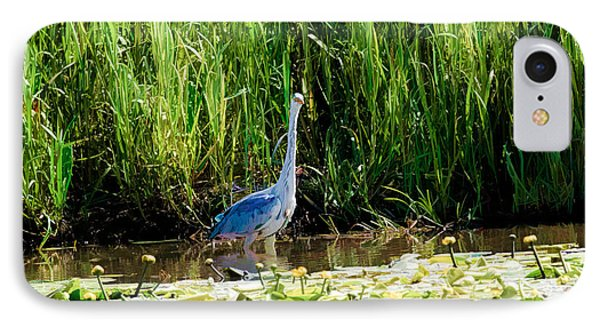 IPhone Case featuring the photograph Heron by Leif Sohlman