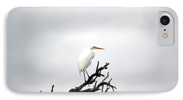 Heron On A Dead Tree IPhone Case
