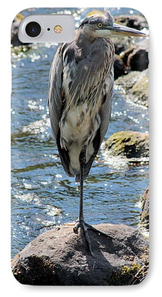 IPhone Case featuring the photograph Heron On One Leg by Kenny Glotfelty