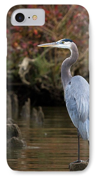 IPhone Case featuring the photograph Heron Perch by Alan Raasch