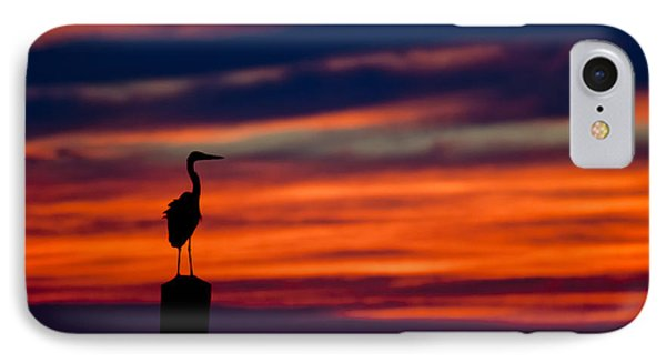 Heron Sunset Silhouette IPhone Case by Richard Mason