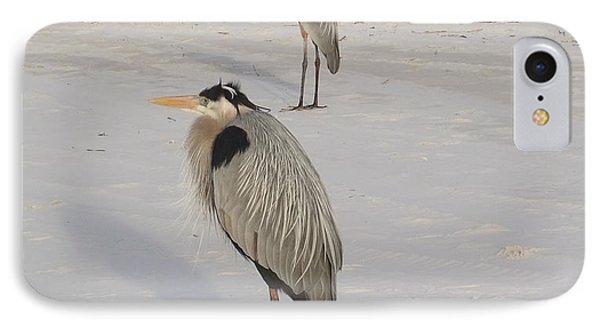 Heron Two IPhone Case by Deborah DeLaBarre