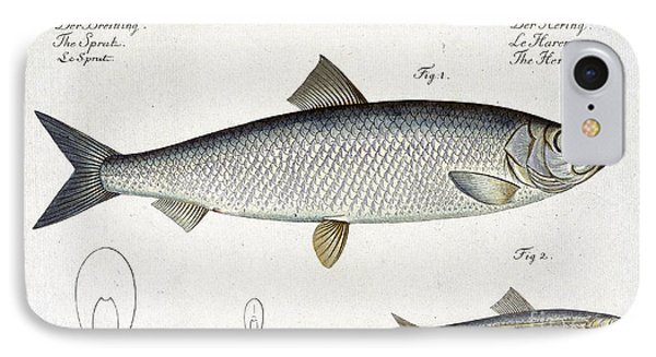 Herring Phone Case by Andreas Ludwig Kruger