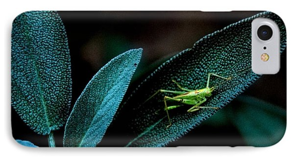IPhone Case featuring the photograph Hey  I'm Trying To Hide by Debra Fedchin