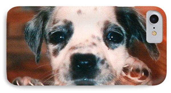 Dalmatian Sweetpuppy IPhone Case by Belinda Lee