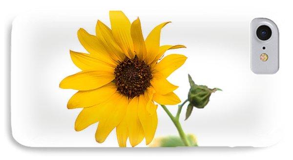 Hi Key Sunflower IPhone Case