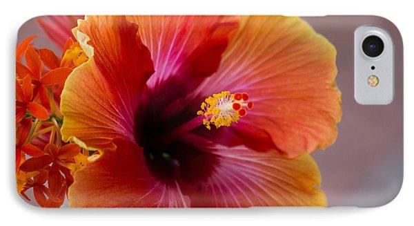 Hibiscus 3 IPhone Case by Sally Simon