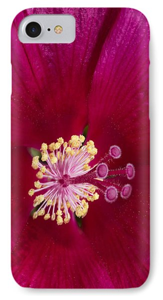 IPhone Case featuring the photograph Hibiscus Close Up - Phone Case Design by Gregory Scott