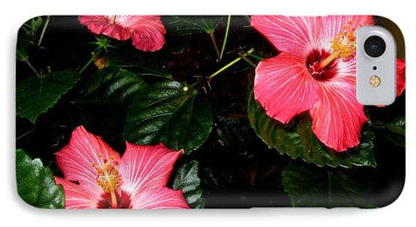 IPhone Case featuring the photograph Hibiscus Flowers by Oksana Semenchenko