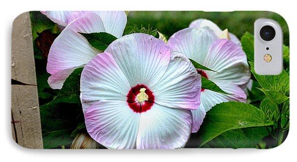 IPhone Case featuring the photograph Hibiscus Giants by Kathleen Stephens