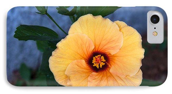 Hibiscus In Fading Light IPhone Case