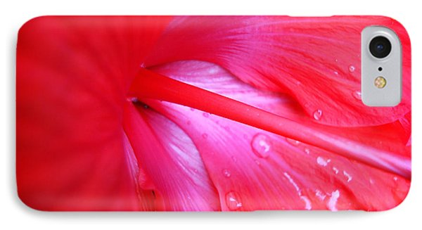 IPhone Case featuring the photograph Hibiscus by Kara  Stewart