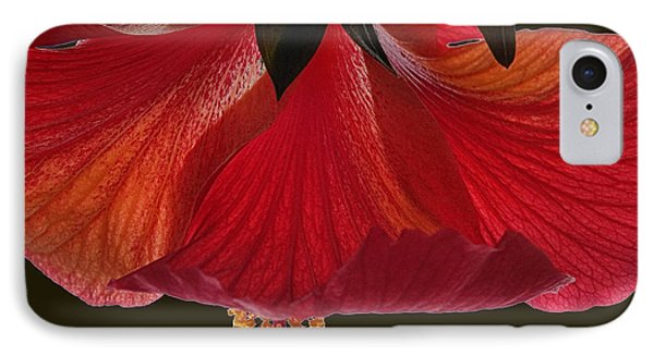Hibiscus On Black IPhone Case by Mikki Cucuzzo