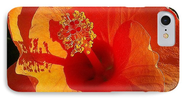 IPhone Case featuring the photograph Hibiscus by Suzanne Silvir