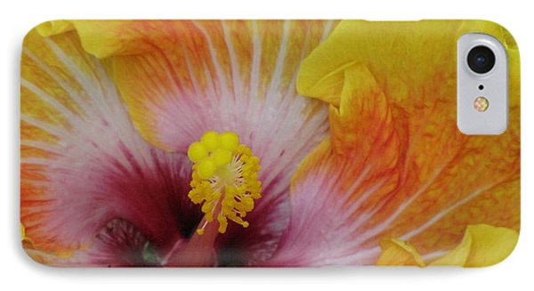 IPhone Case featuring the photograph Hibiscus by Tam Ryan