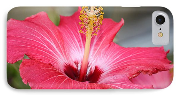 Hibiscus Phone Case by Todd A Blanchard