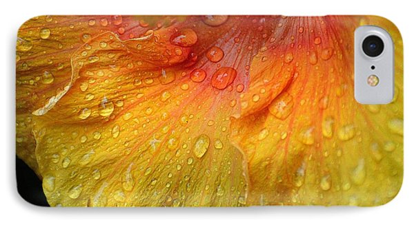 IPhone Case featuring the photograph Hibiscus Water Drops by Lisa L Silva