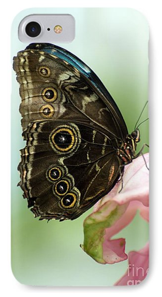 IPhone Case featuring the photograph Hidden Beauty Of The Butterfly by Debbie Green