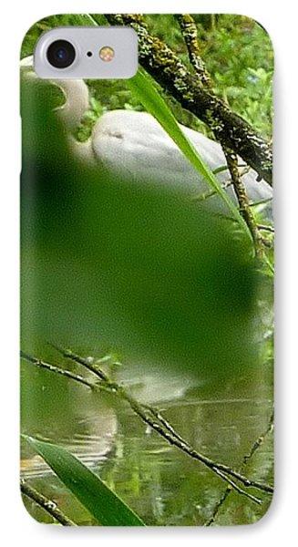 Hidden Bird White IPhone Case by Susan Garren