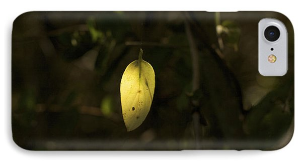 IPhone Case featuring the photograph Hidden Treasure - Yellow Leaf Art Print by Jane Eleanor Nicholas