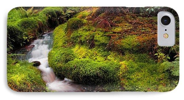 Hidden Woodland Corner. Benmore Botanical Garden. Scotland Phone Case by Jenny Rainbow