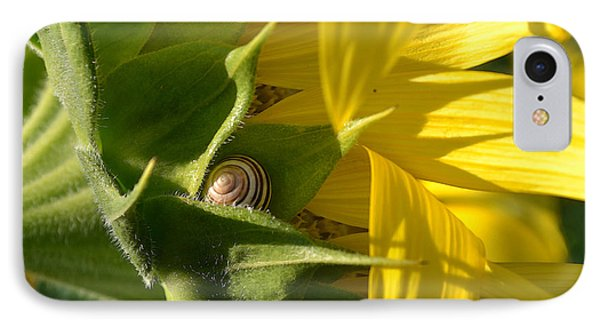 IPhone Case featuring the photograph Hiding Snail Wc  by Lyle Crump
