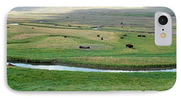 High Angle View Of American Bisons IPhone Case by Panoramic Images