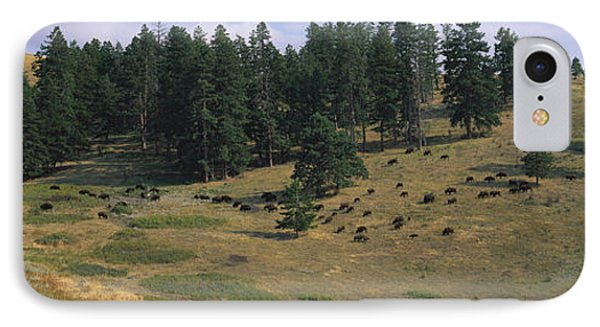 High Angle View Of Bisons Grazing IPhone Case by Panoramic Images