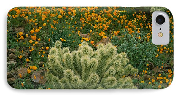 Opuntia Bigelovii iPhone 7 Case - High Angle View Of Mexican Gold Poppies by Panoramic Images