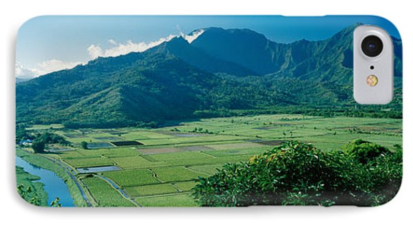 High Angle View Of Taro Fields, Hanalei IPhone Case by Panoramic Images