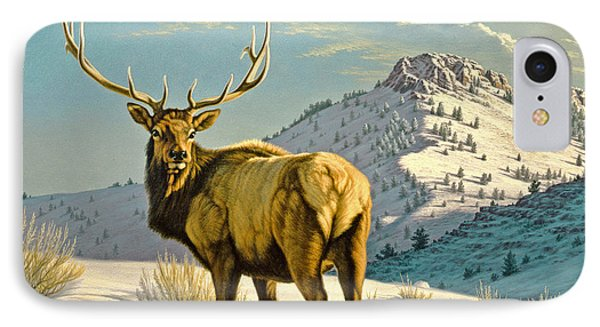 High Country Bull IPhone Case by Paul Krapf